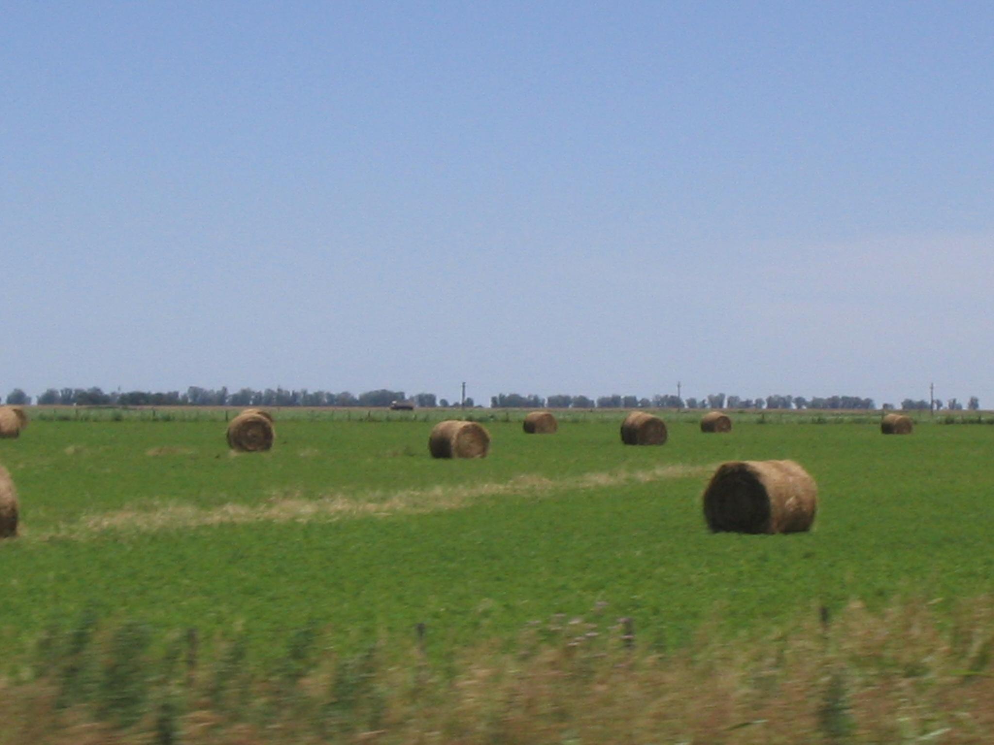 rollos de alfalfa-montecor